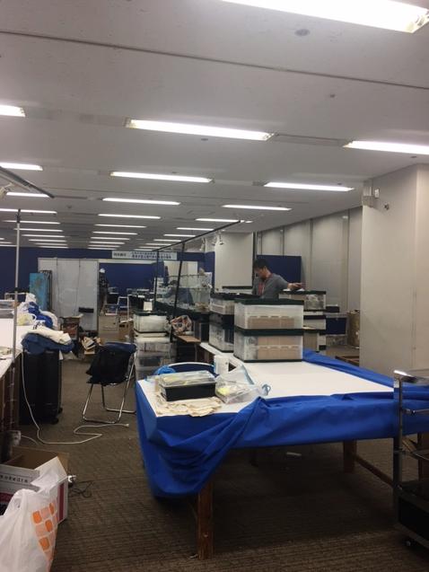 大阪ミネラルショー2017